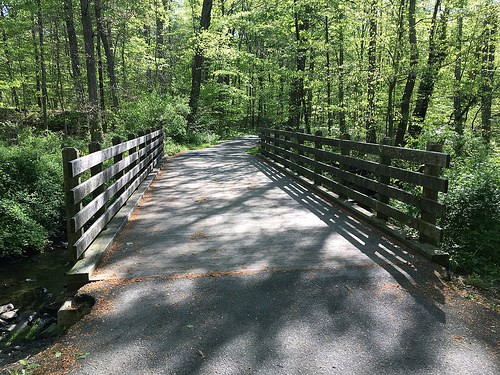 Explore Rancocas State Park With These 4 Outdoor Activities